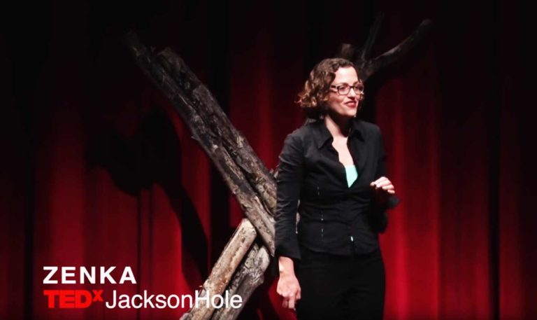 Will virtual and augmented reality move us into the knowledge age? | Zenka | TEDxJacksonHole